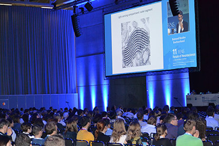 audience at FENS FOrum 2018