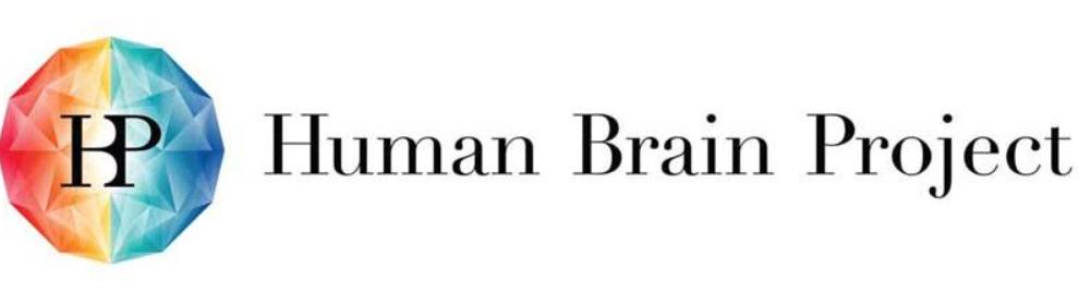 Logo Human Brain Project