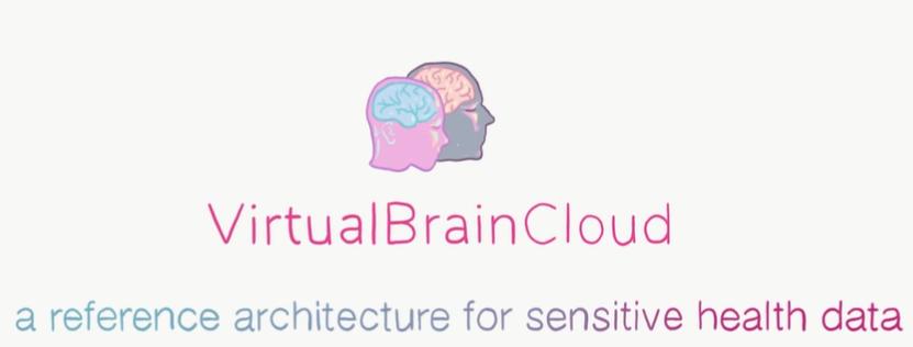 Logo Virtual Brain Cloud