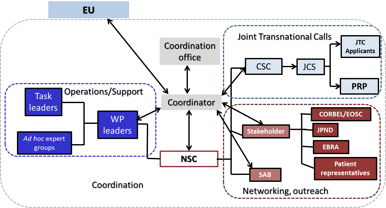 shows the structure and workflow of NEURON Cofund2 consortium